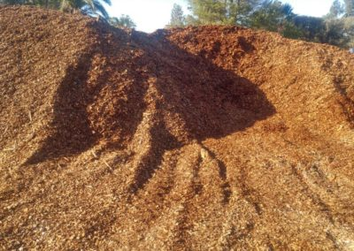 Pine Woodchips