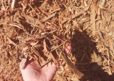 Pine peelings